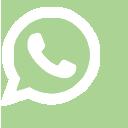 WhatsApp 46999096677